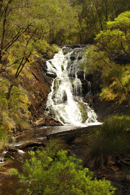 Beedelup Falls - Pemberton 2AM-113039_7D