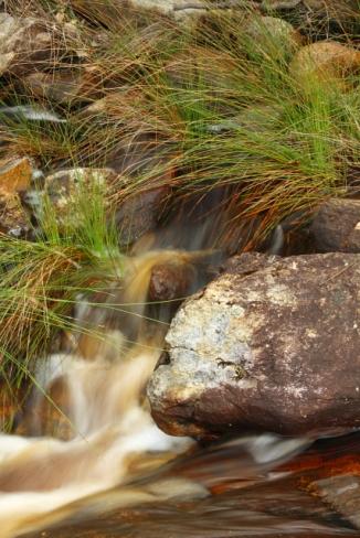 Fernhook Falls 2AM-112855_7D