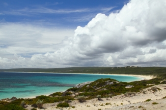 Hamelin Bay 2AM-113080_7D