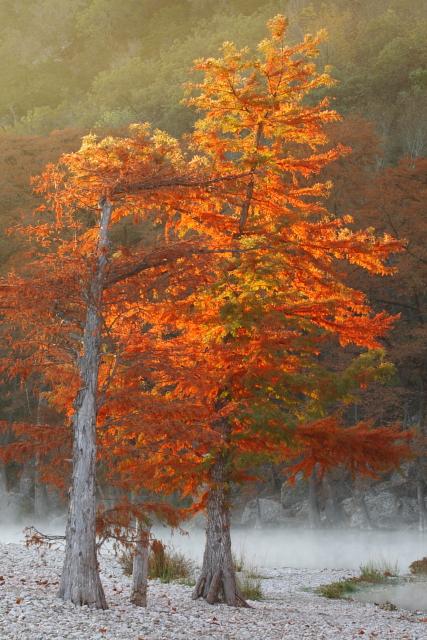 17_Garner State Park_Andrew McInnes-2AM-27737_small