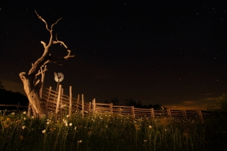 18_Stockyards_Andrew McInnes-2AM-110286_small