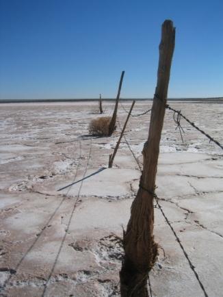 22_Salt Flat_Andrew McInnes-2AM-0010_small