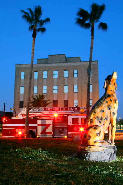 Firehouse Dalmatian 2AM-114946_7D_edited_blog