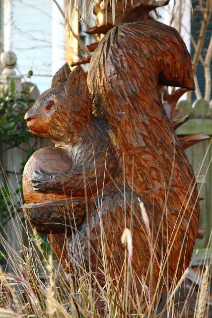 Squirrel with Acorn 2AM-114497_7D_blog