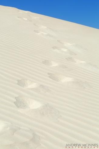 Dunes_Port-Denison-2AM-002256