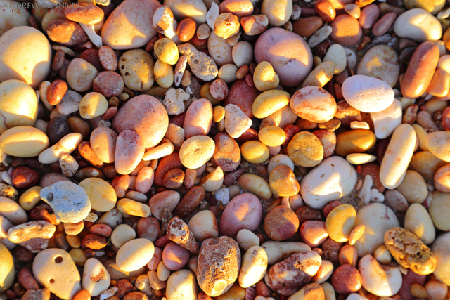 Pebble-Beach_Exmouth-2AM-002629