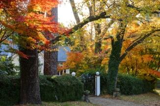 Autumn Colour 2AM 8175-7 HDR