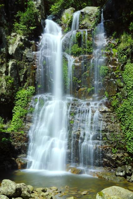 Minnamurra Falls 2AM-007183