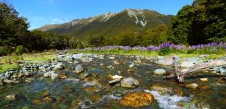 Cascade Creek 2AM 0842-0843 pano