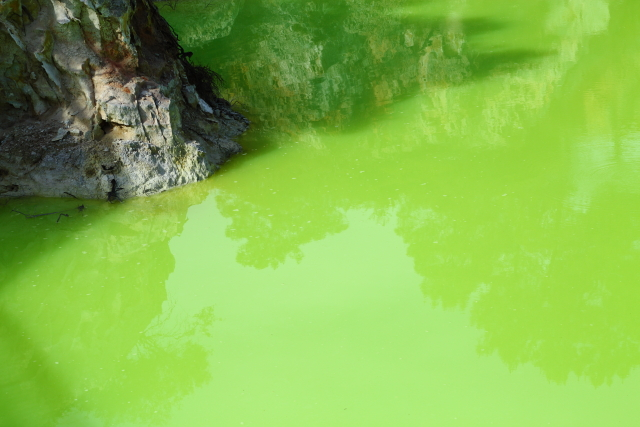 Devils Bath - Waiotapu 2AM-000106