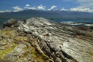 Kaikoura Peninsula 2AM-000456. ©Andrew McInnes