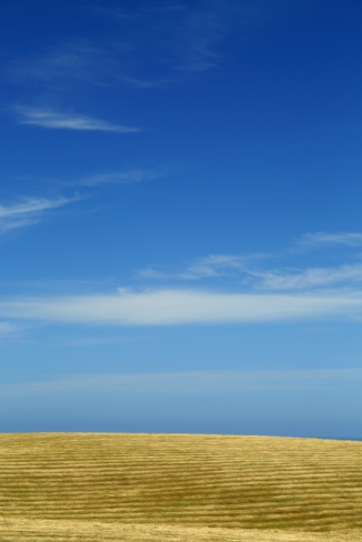 Kaikoura Peninsula 2AM-000482. ©Andrew McInnes