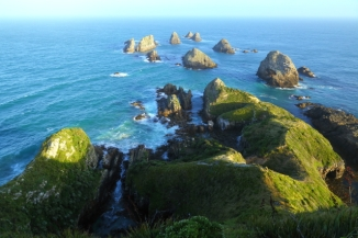 Nugget Point Lighthouse 2AM-000754