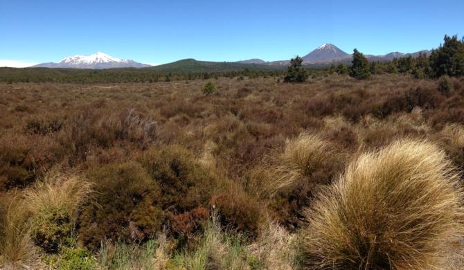 Tongariro National Park 2AM-000471. ©Andrew McInnes