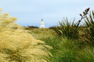 Waipapa Point Lighthouse 2AM-000600