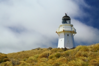 Waipapa Point Lighthouse 2AM-000616