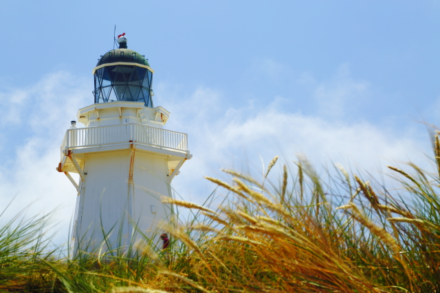 Waipapa Point Lighthouse 2AM-000622